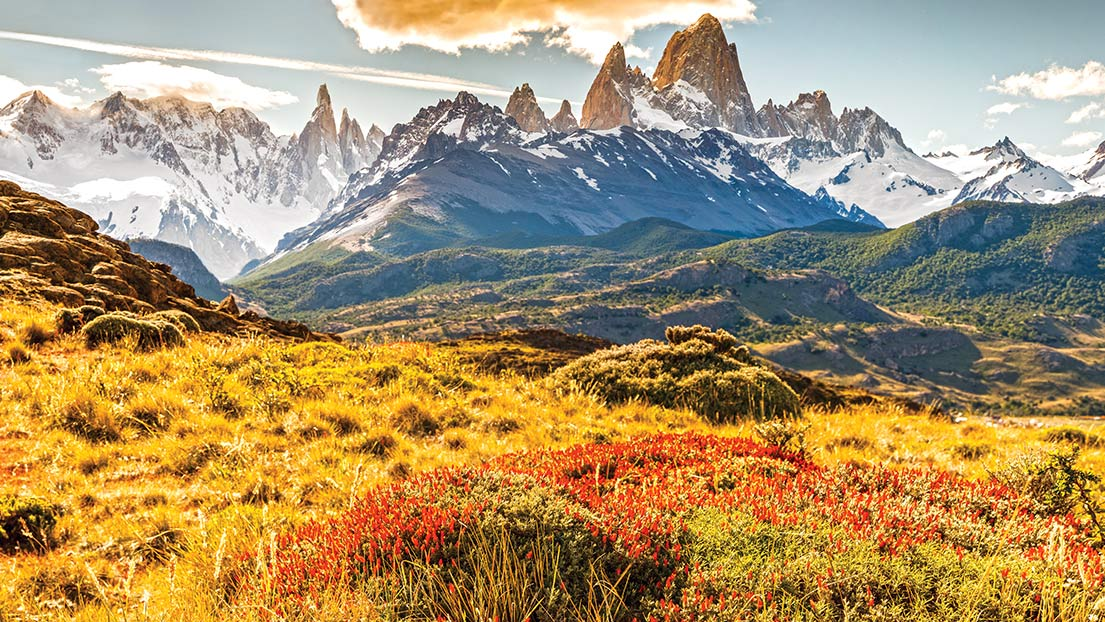 patagonia environmental essays Free essay: 1 strategy: patagonia's product differentiation as their strategy, through csr, which involves sustainability, philanthropic initiatives, moral.