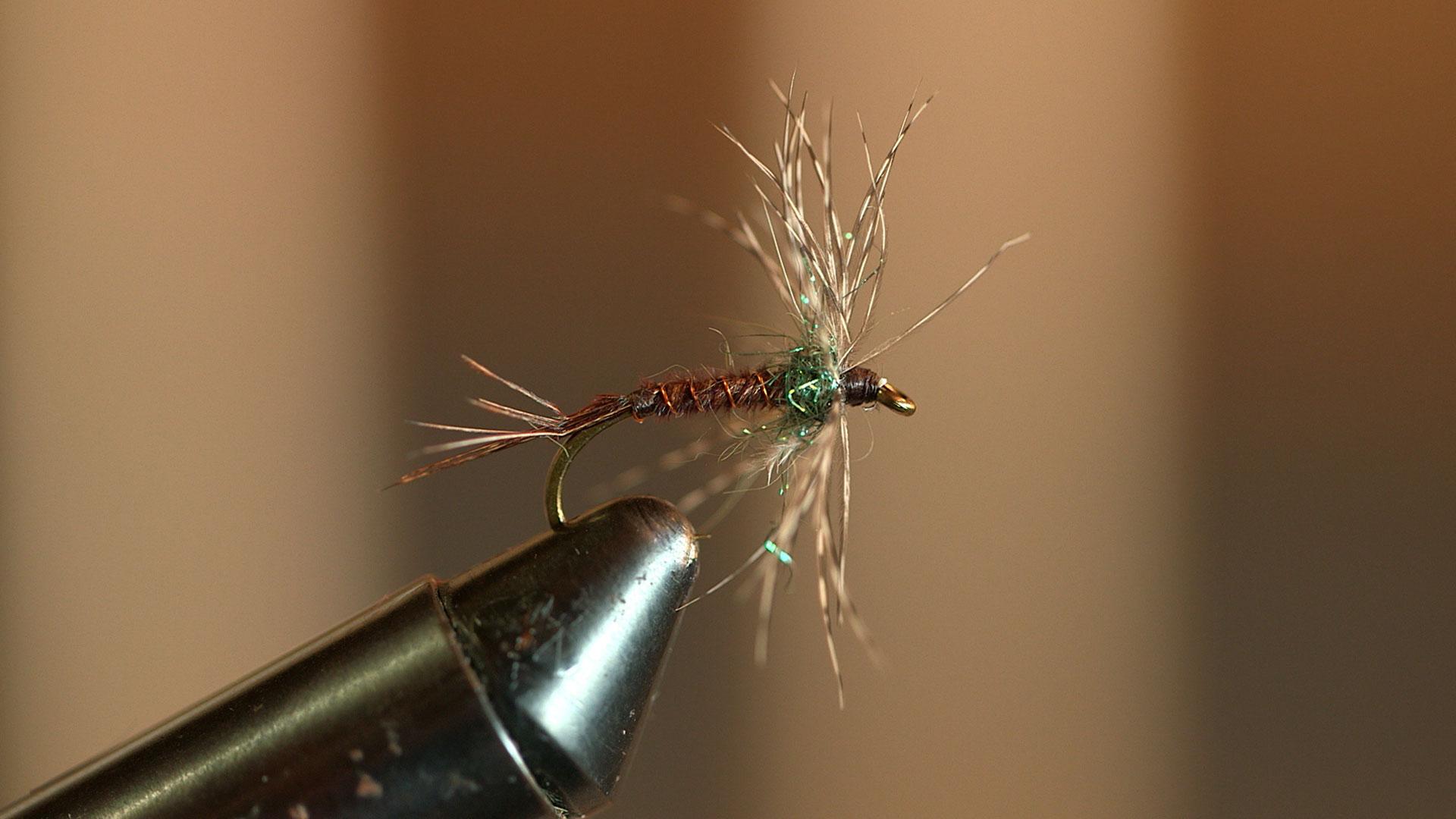 patagonia sports fly fishing