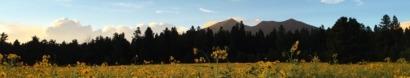 Flagstaff Mountain Film Festival