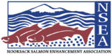 Nooksack Salmon Enhancement Association Logo