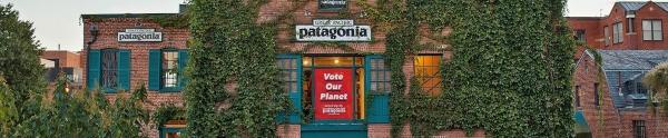 Patagonia Washington DC