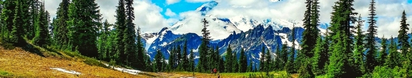Washington Wild