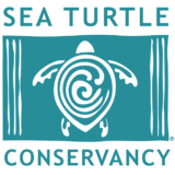 Sea Turtle Conservancy Logo