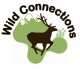 Wild Connections Logo