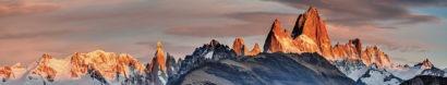 Patagonia Burleigh Heads