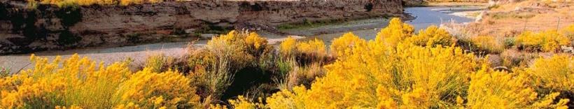 Great Basin Resource Watch