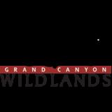 Wild Arizona Logo