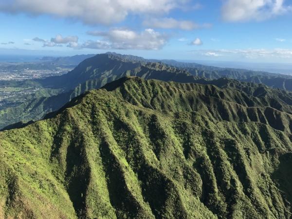 Koʻolau Mountains Watershed Partnership – ʻOhu ʻOhu Koʻolau Inc.