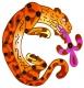 Northern Jaguar Project Logo