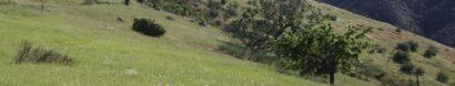 Save Open Space/Santa Monica Mountains