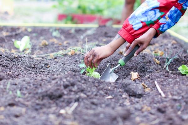 Gardeneers