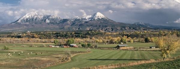 Colorado Farm & Food Alliance