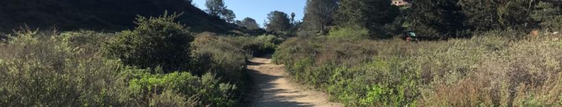 San Diego Canyonlands
