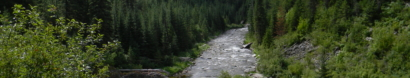 Save wild areas and rivers in the Clearwater Basin of North Central Idaho — Friends of the Clearwater