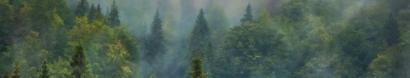 Protect Lake Coeur d'Alene — The Lands Council