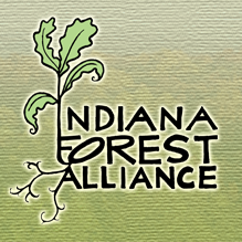 Indiana Forest Alliance