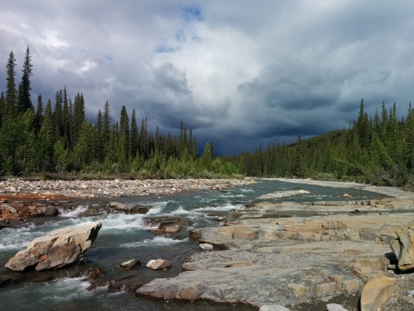 Canadian Parks and Wilderness Society, Northern Alberta Chapter