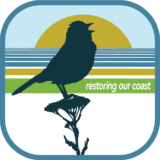Groundswell Coastal Ecology Logo