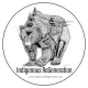 Indigenous ReGeneration Logo