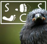 Sitka Conservation Society
