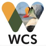 Wildlife Conservation Society, Arctic Beringia Program