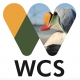 Wildlife Conservation Society, Arctic Beringia Program Logo