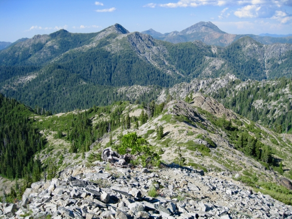 Klamath Forest Alliance
