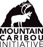 Mountain Caribou Initiative