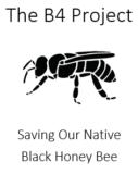 B4Project