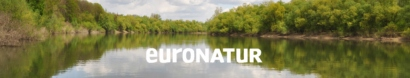 Romania – save Europe's last large virgin forests! NOW! — EuroNatur Foundation