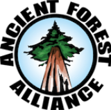 Ancient Forest Alliance Logo