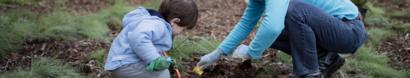Protect Pollinators in Rainier Beach — The Common Acre