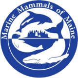 Marine Mammals of Maine Logo