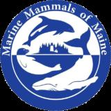 Marine Mammals of Maine Logo