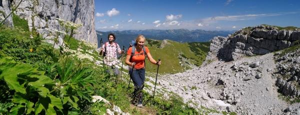 Naturfreunde Österreich, Landesorganisation Tirol