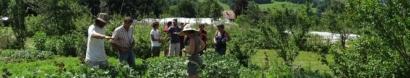 Association Départementale de Développement de l'Emploi Agricole et Rural de Haute-Savoie (ADDEAR 74)