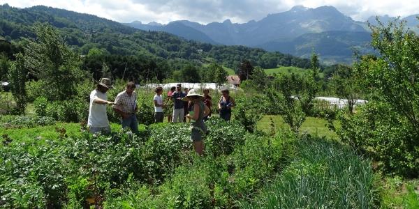 L'Association Départementale de Développement de l'Emploi Agricole et Rural de Haute-Savoie (ADDEAR 74)