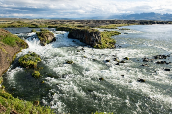 NASF Iceland