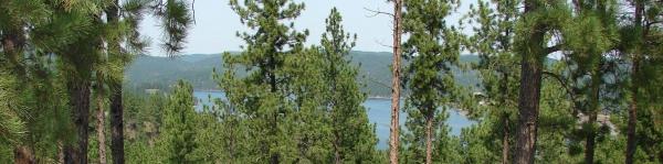 Black Hills Clean Water Alliance