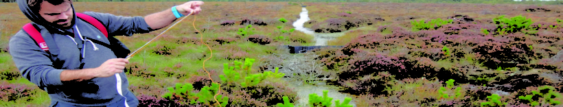 Irish Peatland Conservation Council