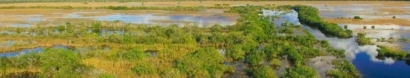 Give Miami Day: Friends of the Everglades — Friends of the Everglades