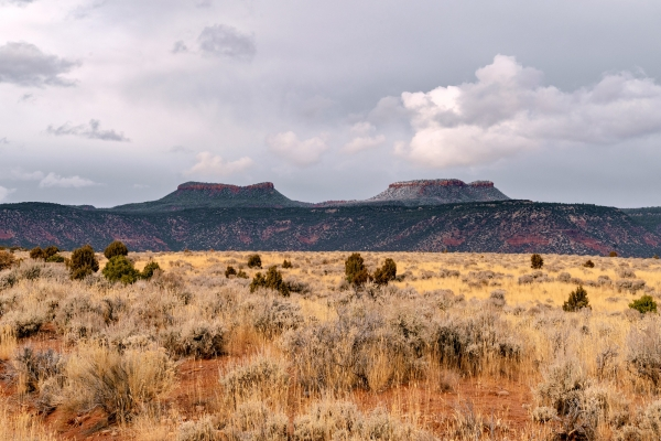 Restore and Expand Bears Ears National Monument