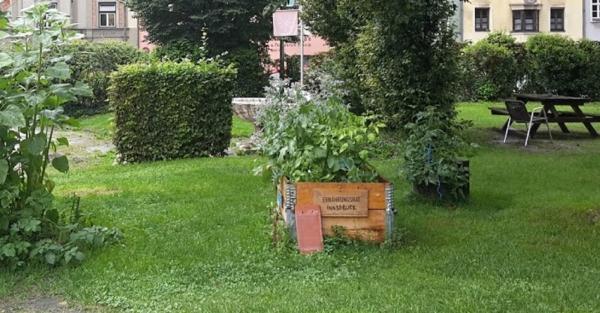 Initiative Ernährungsrat Innsbruck