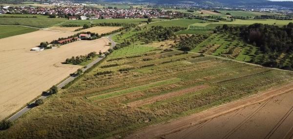Stadt Land Garten e.V. (in cooperation with Soil HUB e.V.)
