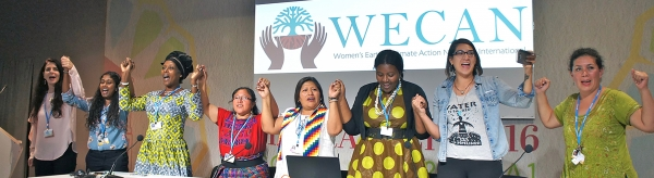 Women's Earth and Climate Action Network