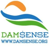 Dam Sense Logo