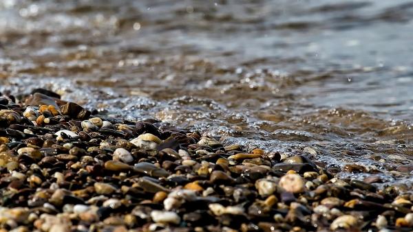 Massachusetts Rivers Alliance
