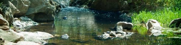 The Escondido Creek Conservancy