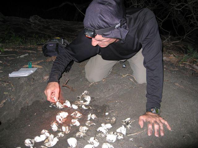 Nest exhumation