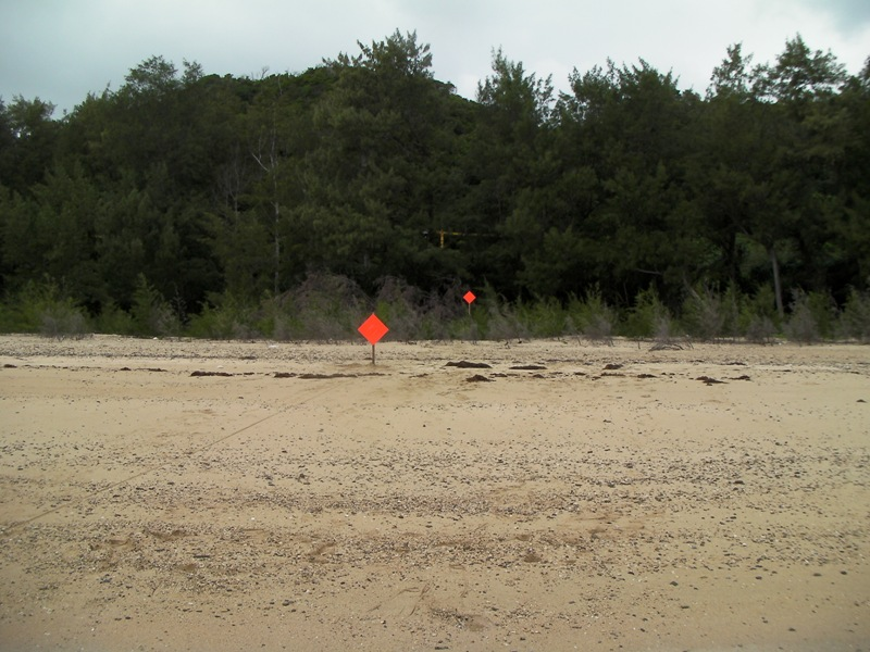 Two orange signs which are placed vertically to the beach